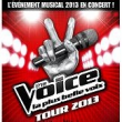 The voice tour 2013 concert